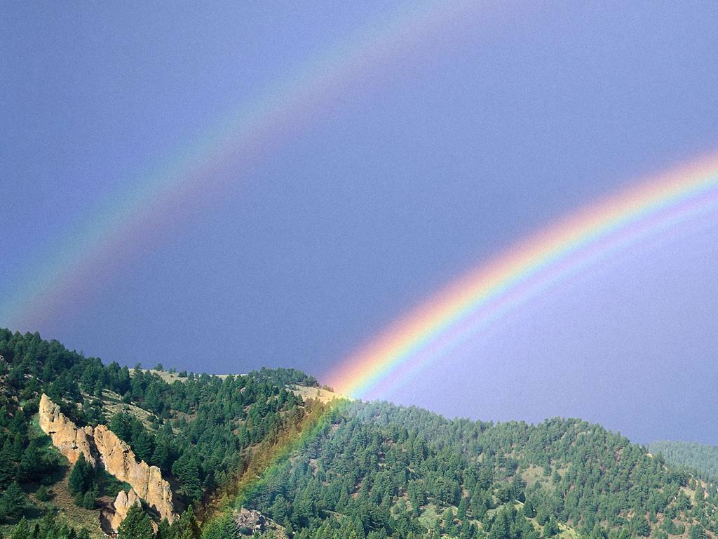 """Résultat de recherche d'images pour """"les couleurs de l'arc en ciel en ordre"""""""