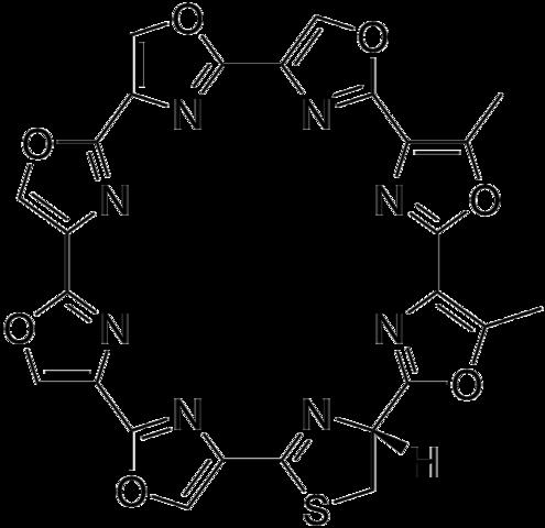La télomestatine ; découverte en 2001, sa structure est unique : quasiment répétitive, elle est aussi quasiment plane, comme un grand plateau