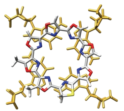En jaune, le quadruplexe de Guanine. En bleu blanc rouge la télomestatine. (modélisation numérique) (source)