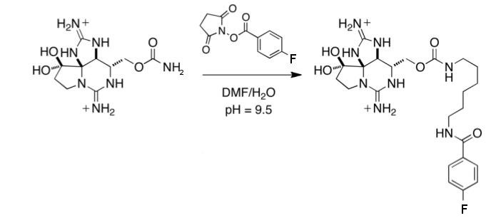 18Fsaxitoxine