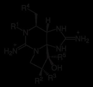 saxitoxine