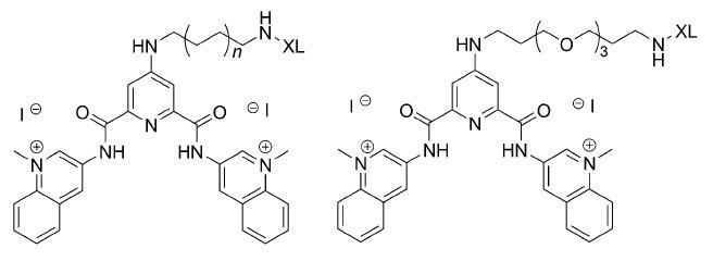 """le """"XL"""" indique une partie variable des molécules. 6 exemples différents ont été ici publiés"""