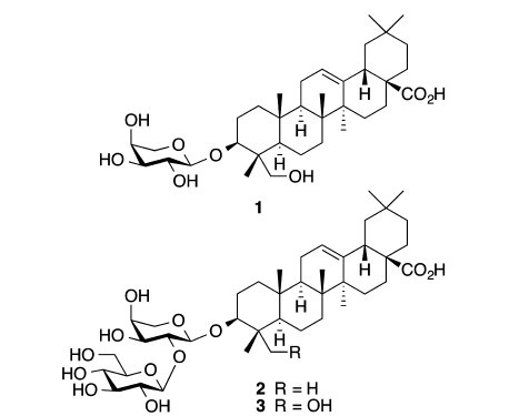 1 Cauloside A ; 2  Saponine PE ; 3 Cauloside C