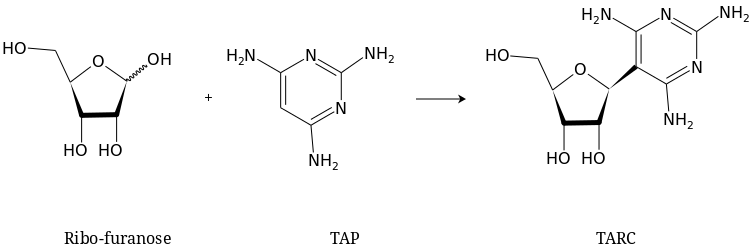 synthesis of TARC