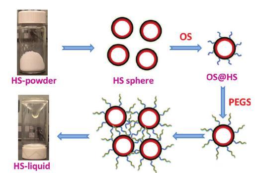 """Des nanosphères creuses (""""Hollow Spheres"""") solides au liquide poreux..."""